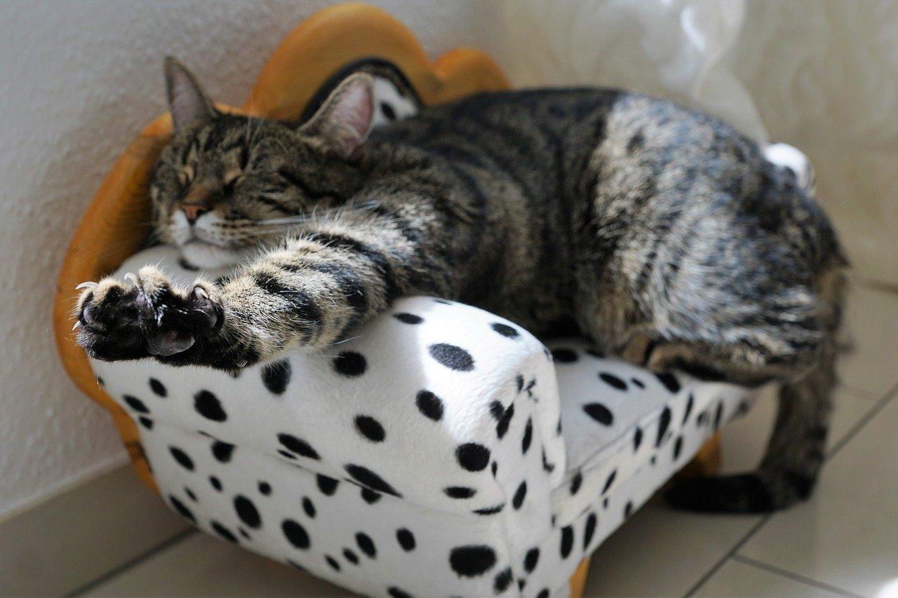 ソファーベッドの寝心地イメージ